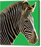 Natural Zebra Canvas Print