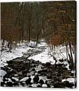 Naturally Minnesota Canvas Print