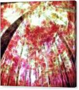 Naturally Pink Canvas Print