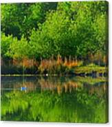 Naturally Reflected Canvas Print