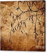 Nature Canvas  Canvas Print