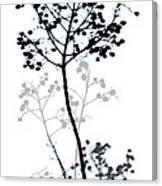 Nature Design Black And White Canvas Print