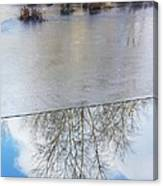 Nature Draws Its Line With Its Ice Canvas Print