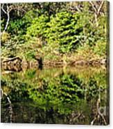 Nature Mirrored Canvas Print