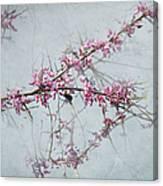 Nature Nurtures Canvas Print