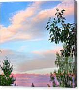Nature Palette Canvas Print