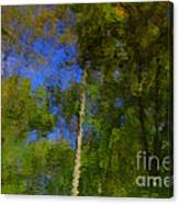 Nature Reflecting Canvas Print