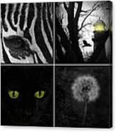 Nature Squares - Collage Canvas Print