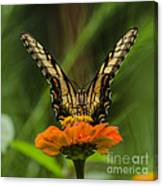 Nature Stain Glass Canvas Print