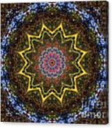 Naturel Star Canvas Print