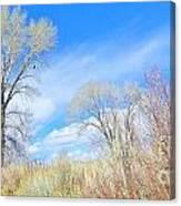 Natures Artwork Canvas Print