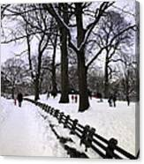 Nature's Canvas On A Wintry Day Canvas Print