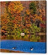 Natures Colorful Autumn Canvas Print