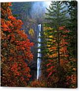 Nature's Color's Canvas Print