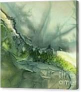Nature's Flow Canvas Print