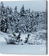 Natures Handywork - Snowstorm - Snow - Trees Canvas Print
