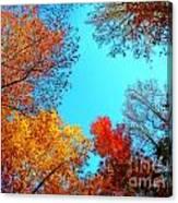 Nature's Pallete 1 Canvas Print