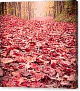 Nature's Red Carpet Revisited Canvas Print