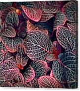 Nature's Rich Tapestry Canvas Print