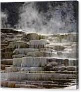 Nature's Sauna Canvas Print