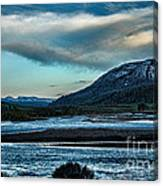 Nature's Touch Canvas Print