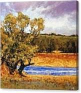 Nature's Trail - Ridgefield Canvas Print