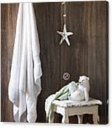 Nautical Bathroom Canvas Print