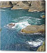 Neah Bay At Cape Flattery Canvas Print