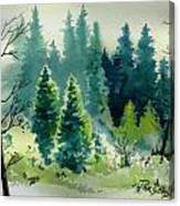 Near Camp Canvas Print