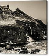 Near Cape Perpetua Canvas Print