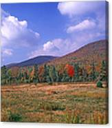 Near Peacham Vermont Canvas Print