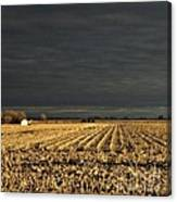 Nebraska Fields Canvas Print