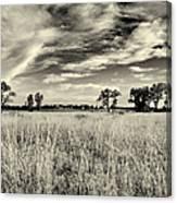Nebraska Prairie One In Black And White Canvas Print