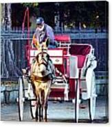 Need A Ride Canvas Print