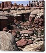 Needles In Canyonlands Canvas Print