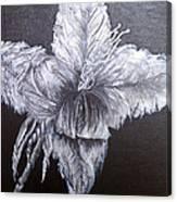 Negative Essence Canvas Print
