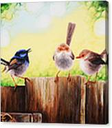 Neighbourhood Gossip Canvas Print