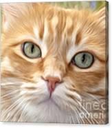 Yellow Cat Digital Art Canvas Print