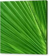 Neon Palm Reader Canvas Print