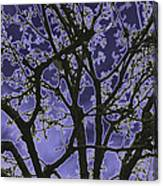 Neon Winter Tree Canvas Print