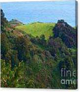 Nepenthe View At Big Sur In California Canvas Print