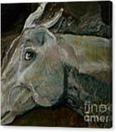 Nephrite's Horses On Stairs Canvas Print