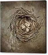 Nest Eggs Canvas Print