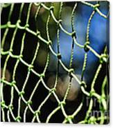 Netting - Abstract Canvas Print