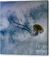 Nettlesphere Canvas Print