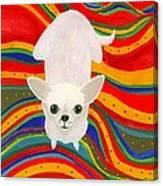 Neutron On A Serape Canvas Print