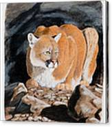 Nevada Cougar Canvas Print