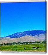 Nevada Range Canvas Print