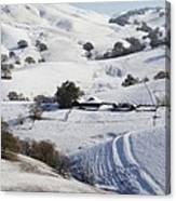Never Snows In California Canvas Print