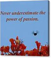 Never Underestimate The Power Of Passion Canvas Print